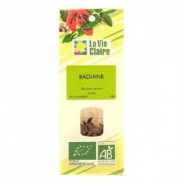 BADIANE FRUITS SAC 40 G