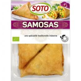 SAMOSSAS LEGUMES