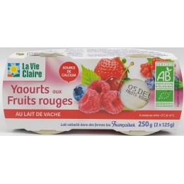 YAOURT FRUITS ROUGES 2X125G
