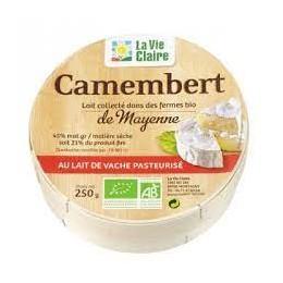 CAMEMBERT 45% MG