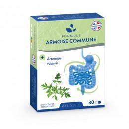 ARMOISE COMMUNE